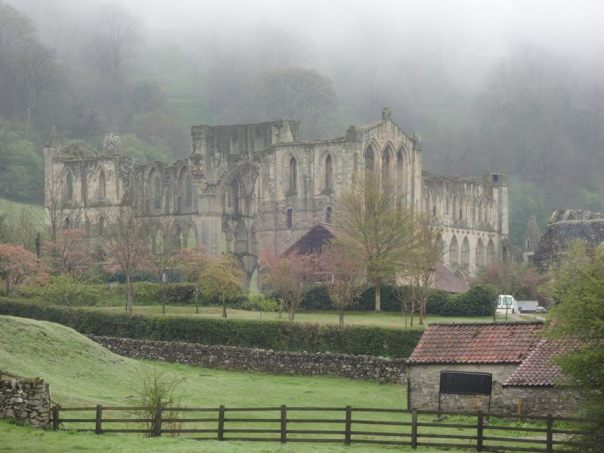 Rievaulx Abbey (Photo: Andy Petford)