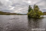 Loch Tarff. Photo Steve Ashworth.