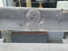 Cute dog engraving on bench