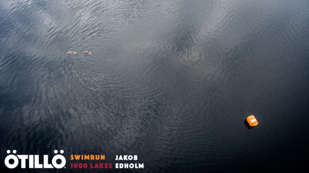 Swimmers from above